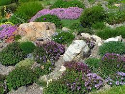 Rock Garden Plant Hillside Rock Garden Planting Ideas
