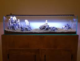 Aquarium For Home Decoration Decorations Fill Your Home With Outstanding Mr Aqua 12 Gallon