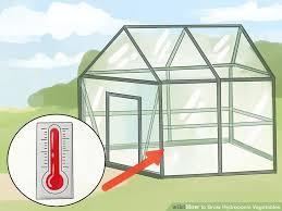 indoor hydroponic vegetable garden pyihome com
