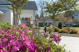 Nursing Homes In Atlanta Ga Area Wesley Woods Leaders In Senior Living Ccrc