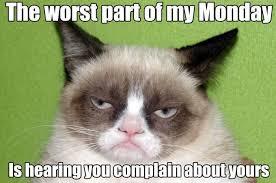 Grumpy Cat Monday Meme - best grumpy cat monday meme know your meme