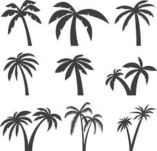 royalty free palm tree clip vector images illustrations