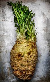 Celery Root Vegetable - celery root offers a taste of the french countryside sfgate