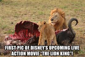 Lion King Meme - the lion king live action movie first picture album on imgur