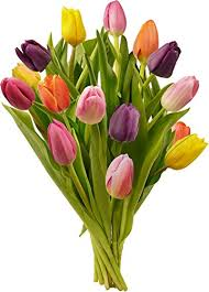 tulip bouquets benchmark bouquets multi colored tulips grocery