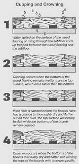 ta bay wood floors and moisture by through the woods