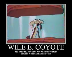 Wile E Coyote Meme - coyote and roadrunner sayings google search the far side of