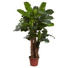 artificial banana tree ebay