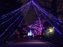 national zoo christmas lights visiting the smithsonian national zoo free tours by foot