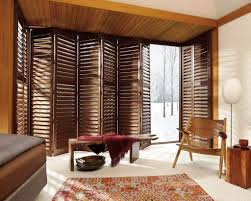 interior window shutters and blinds pictures