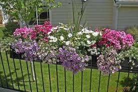 planter on deck railing window box contest