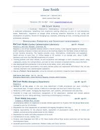 It Professional Resume Sample by Resume Format For It Professionals Free Resume Example And