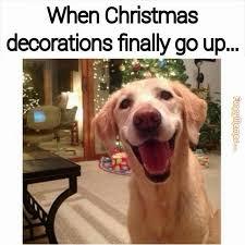 Christmas Dog Meme - 12 signs you re a christmas addict memes christmas humor and humor