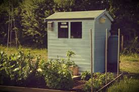 shed makeovers allotment shed makeover the garden smallholder
