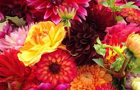 online florists top online florists uk ratethat net
