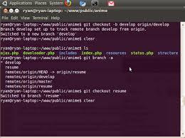 Git Resume Git Clone A Remote Branch Ryan Rampersad U0027s Chronicles