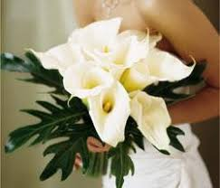 Boutonniere Prices Special Offers U003e Flowers 4 U Our Vendors At Bridesclub