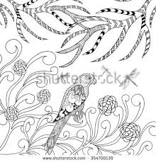 tropical parrot bird coloring page animals stock vector 354700139