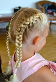 100 picture 2 french braids hairstyles 21 beautiful two braids