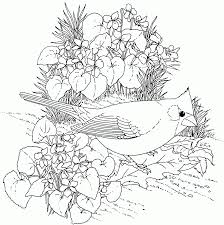 nature colouring pages nature colouring pages for adults in