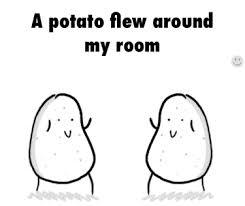 Potato Flew Room Adea Gifs U0026 Share Gfycat Gifs