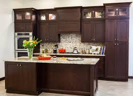 Shaker Maple Kitchen Cabinets by Cabinets Nj Modern Kitchen U0026 Bath