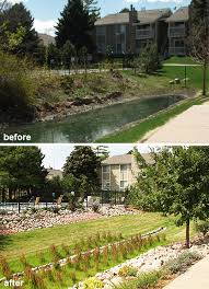 Retention Pond In Backyard Renovation Of An Outdated Hoa Landscape And Detention Pond