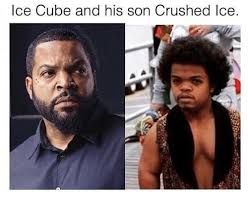 Ice Cube Meme - ice cube and his son crushed ice ice cube meme on me me