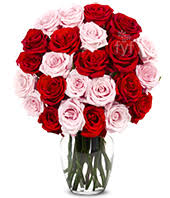 How Much Is A Dozen Roses Two Dozen Premium Long Stem Red Roses At From You Flowers
