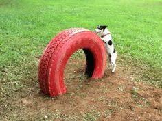 Dog Playground Equipment Backyard by Images U2026 Pinteres U2026