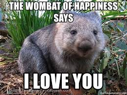 Wombat Memes - the wombat of happiness says i love you wombat of happiness