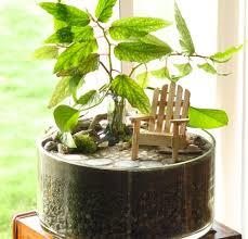 images of miniature indoor gardens garden and kitchen