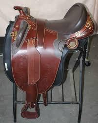 Horse Saddle by Draft Horse Australian Saddle By Sydney Saddleworks Frontier