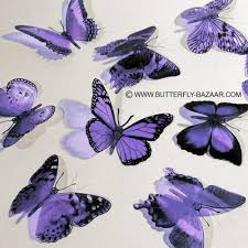 3d butterflies in lilac pastel light purple lavender 12x 12 00