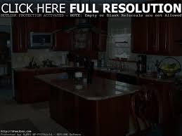 100 chicago kitchen cabinets interior creative contempo