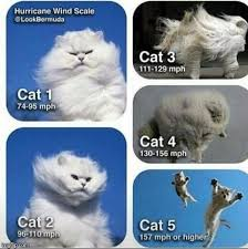 Be Prepared Meme - be prepared and stay safe know your categories hurricane