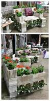 this cinder block garden construct sure looks cool growing