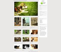 photo gallery doteasy scripts library