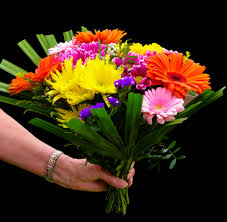 s day floral arrangements free images petal gift color colorful flora thank you