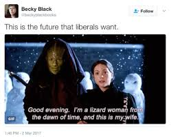 Harry Potter Trolley Meme - liberal meme tumblr