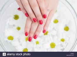 red painted finger nails stock photos u0026 red painted finger nails