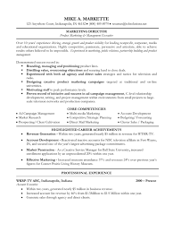 C Level Executive Resume Download Format Resume Jurnal Melia Gustina 1 Docshare Tips