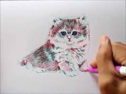 simple cat drawing 3 youtube
