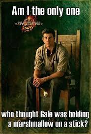 Hunger Games Meme - best 25 hunger games memes ideas on pinterest hunger games