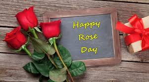 happy rose day 2017 wishes greetings images wallpaper shayari
