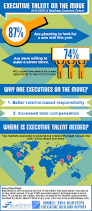 How To Make A Resume With Only One Job by Executive Talent On The Move Infographic Bluesteps
