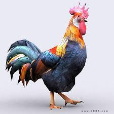 animated 3drt rooster cgtrader