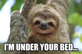 Sexy Sloth Meme - sexy sloths on twitter goodnight sleep tight d sloth