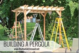 that u0027s what che said the pergola project building a