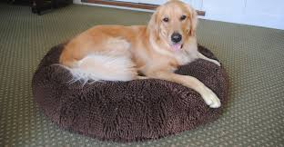 Soggy Doggy Doormat Soggy Doggie Super Snoozer Inner Circle Direct